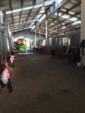 Emirates One&Only Wolgan Valley: Stables