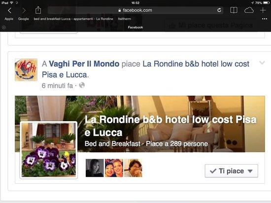 B&B La Rondine : Offerte alloggi Pisa e Lucca Rondine low cost