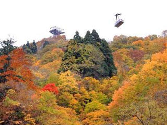 Yuzawa Kogen in Autumn