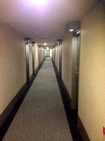 Comfort Hotel Kochi Station: 廊下