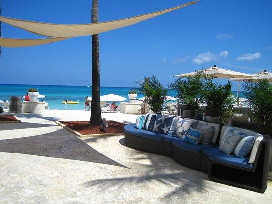 Grand Cayman Marriott Beach Resort: cute decor