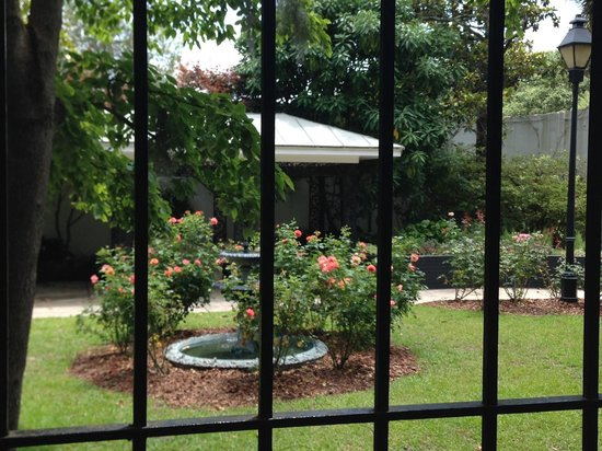 Savannah Bike Tours: Gardens at Forsyth Park