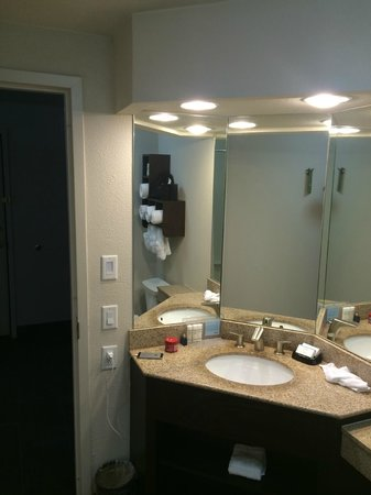 Hampton Inn & Suites New Orleans Downtown (French Quarter Area) : Bathroom Sink