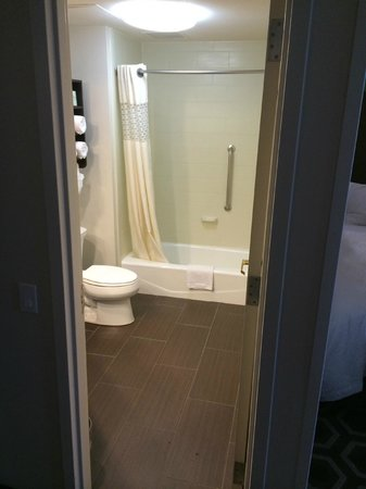 Hampton Inn & Suites New Orleans Downtown (French Quarter Area) : Shower