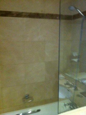 Royal Hotel Paris Champs Elysees: Shower
