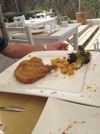 Chezz Gerdi : An appetite as big as this plate is necessary for the Milanesa - wonderful!