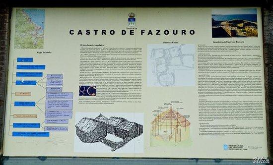 Castro de Fazouro: descripción del castro