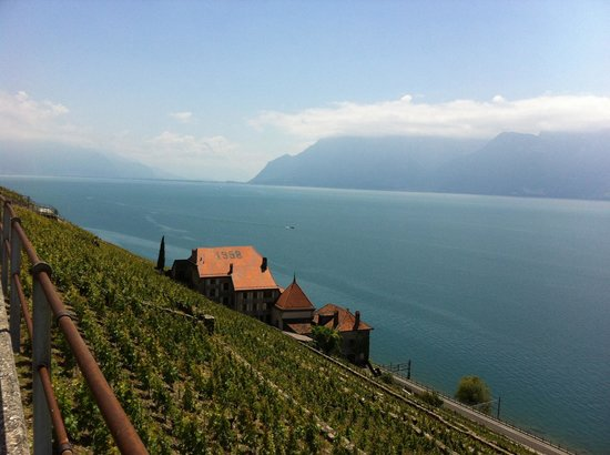 WINEMAX - Swiss Wine Exclusive Tour