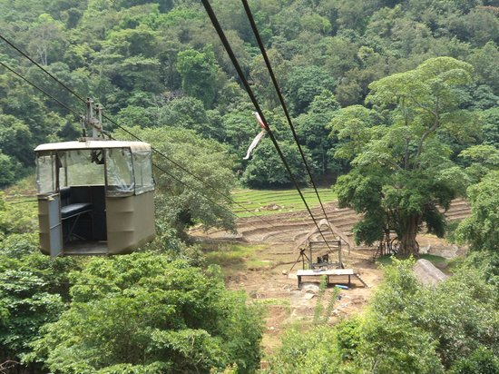 Jungle Thema Slaapkamer : Cable car picture of ella jungle resort ella tripadvisor
