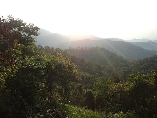 Ella Jungle Resort: Mountain range