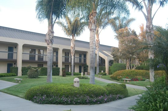 Best Western Plus South Coast Inn : Off The Ground