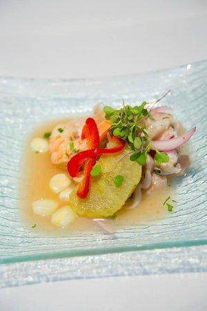 ... ceviche de los andes recipe tuna ceviche de los andes the latin