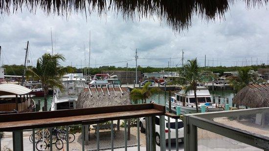 Burdines Waterfront: View of Marina