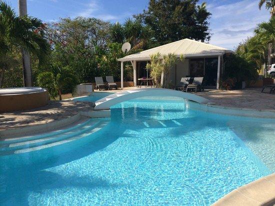 La Metisse : La piscine