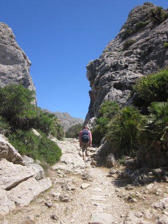 Boquer Valley (Val de Boquer): The trail