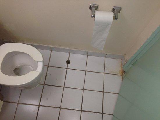 Seagull Hotel Miami South Beach: Bathroom ew