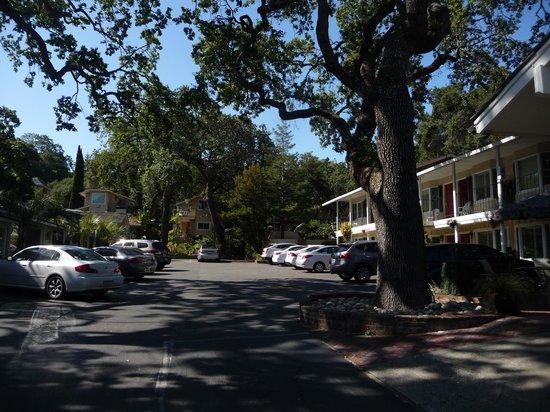 Saratoga Oaks Lodge : The Lodge from the driveway