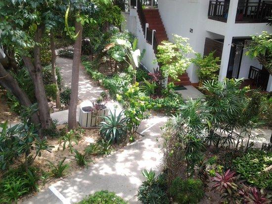 Lamai Wanta : Вид со 2-этажа, с балкона