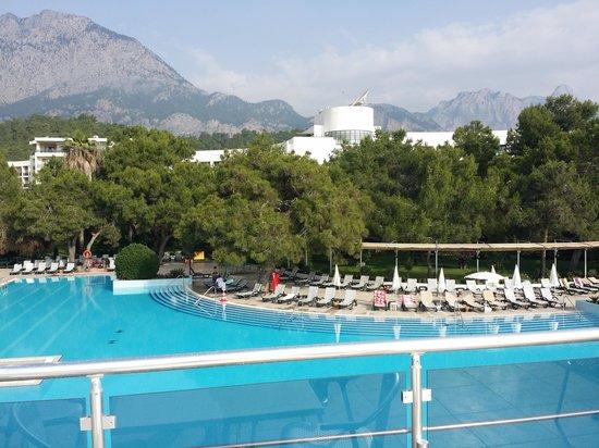 Majesty Club La Mer: vdovech