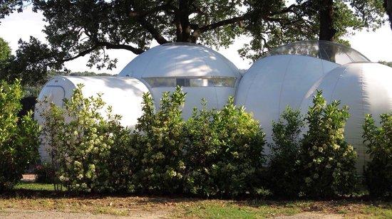 Mil Estrelles: La burbuja Antares