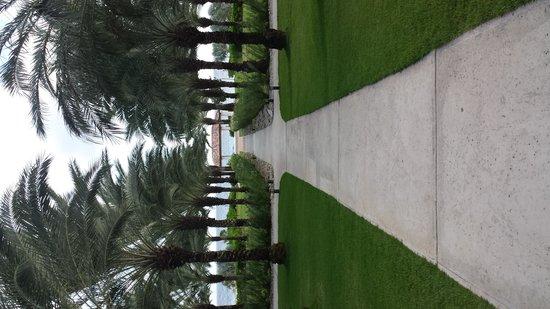 Santa Barbara Beach & Golf Resort, Curacao: Beautiful grounds and tree lined walkways