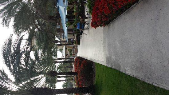 Santa Barbara Beach & Golf Resort, Curacao: Walkway with cafe on the right