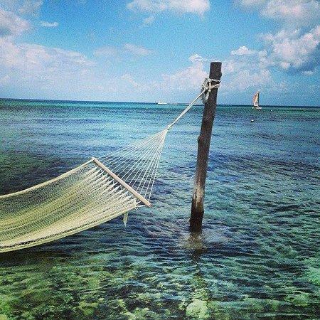 Secrets Aura Cozumel: Beach view
