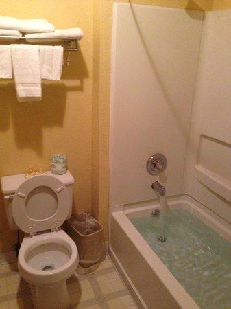 Days Inn Moab: バスルーム