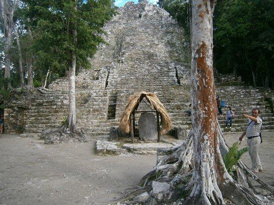 Ruines de Cobá : La piramide all'ingresso del sito!!!
