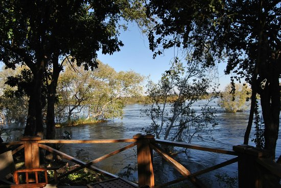 Thorntree River Lodge: This is the view from our room on the banks of the Zambezi River