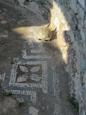 The Basilica of Saint John: Ancient Mosaic floor