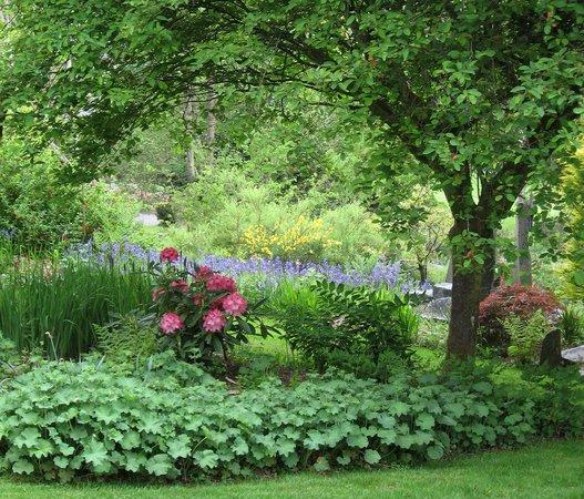 Cae Hir Gardens: Spring at Cae Hir.