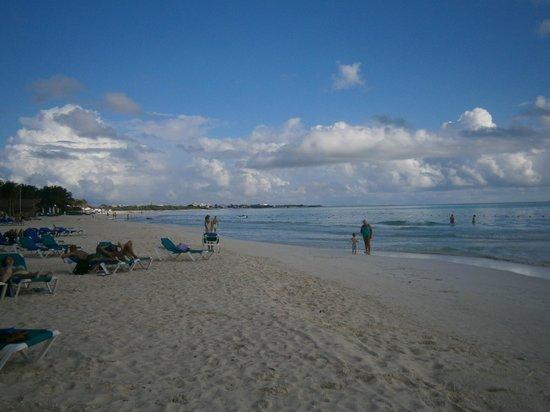Catalonia Playa Maroma: Panoramica della spiaggia!!!