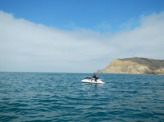 San Diego Bay Adventures: Amazing!
