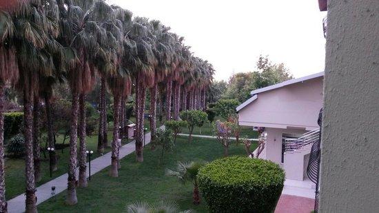Gardenia Beach Hotel: Unser Blick vom Balkon