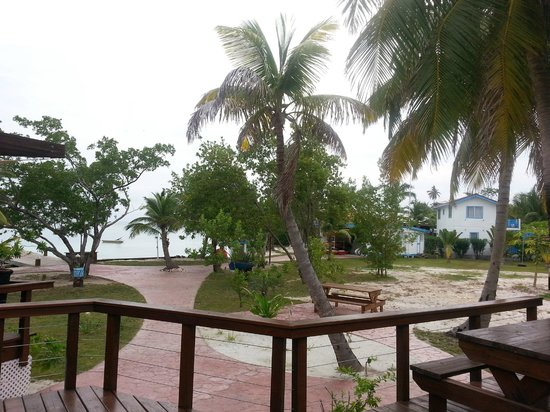 Hatchet Caye Resort: Path to dining area and other cabins