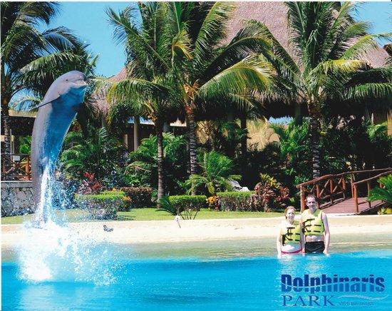Dolphinaris Riviera Maya Park: me and my husband Paul