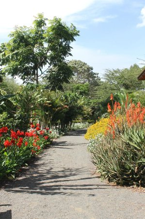 Tloma Mountain Lodge, Tanganyika Wilderness Camps: Beautiful flower-filled pathways