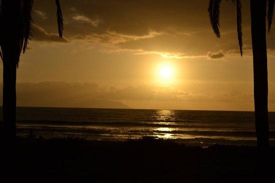 Gran Oasis Resort: Sunset on Beach Las Americas