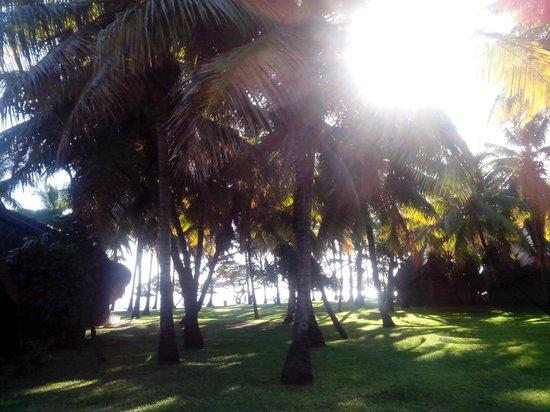La Pirogue Mauritius: Les bungalows disséminés