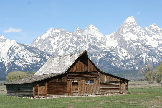 Jackson Hole Wildlife Safaris - Day Tours: My take on a famous Ansel Adams photo.
