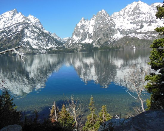 Jackson Hole Wildlife Safaris - Day Tours : Tetons from Jenny Lake
