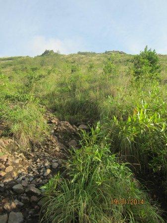 The Ayu Kintamani: trek to mt batur