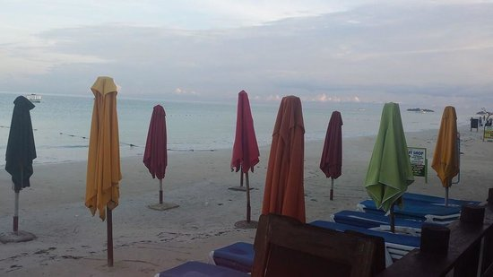 Negril Palms Hotel: Early morning..