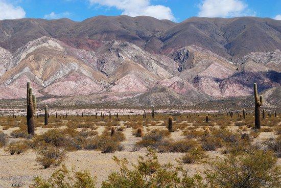 Parque Nacional Los Cardones Cachi, Argentina