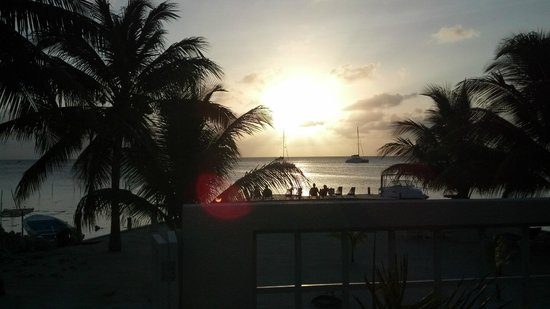 Iguana Reef Inn : Another beautiful day by the Iguana reef pool