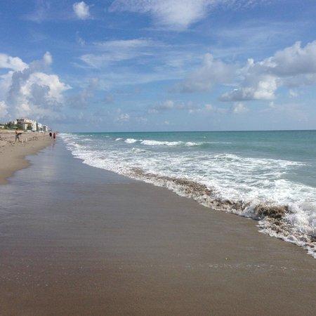 Vistana's Beach Club: beautiful beach