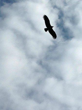 Condor's Cross: blue sky