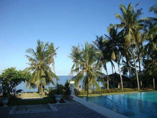 Villa Rosa : pool area