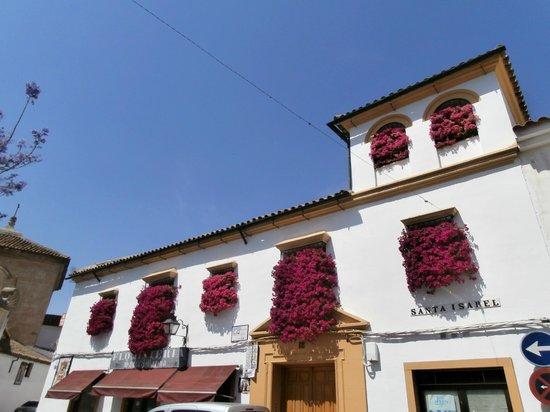Palacio Museo de Viana : balconi fioriti